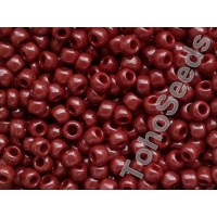 6/0 Toho Opaque Oxblood Brown 06-46 (10g)