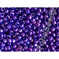 6/0 Toho Higher Metallic Grape 06-461 (10g)