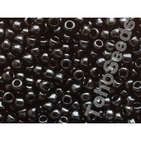 6/0 Toho Opaque Black 06-49 (10g)