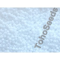 11/0 Toho Opaque White 11-41 (10g)