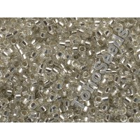 Toho Treasure #1 Transparent Crystal Silver Line TT-01-21 (5g)