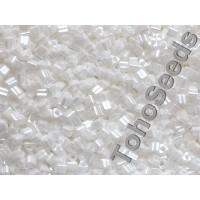 11/0 Toho Triangle Opaque Lustered White TG-11-121 (10g)