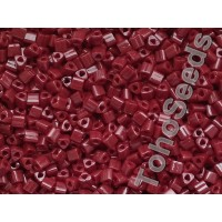 11/0 Toho Triangle Opaque Oxblood TG-11-46 (10g)